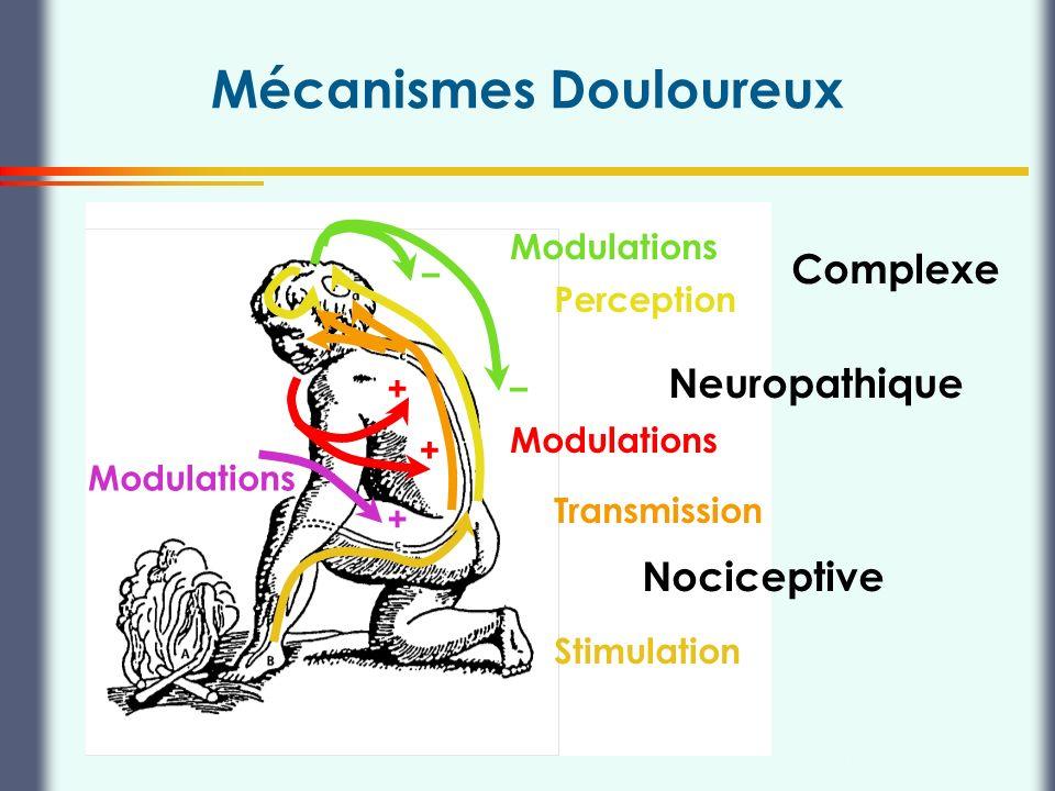 Thierry Buclin, Pharmacologie et Toxicologie cliniques, CHUV Lausanne Mécanismes Douloureux Nociceptive Neuropathique Complexe Stimulation Transmissio
