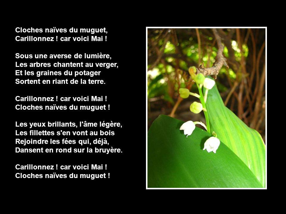 Cloches naïves du muguet, Carillonnez ! car voici Mai ! Sous une averse de lumière, Les arbres chantent au verger, Et les graines du potager Sortent e