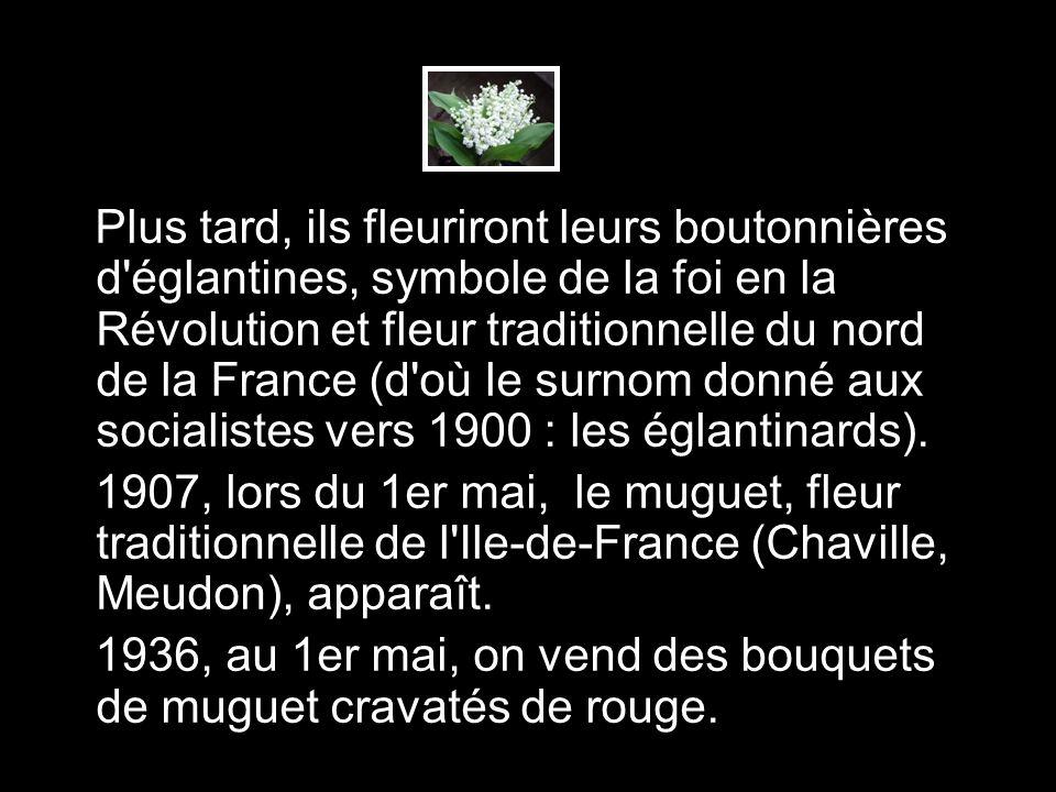 Plus tard, ils fleuriront leurs boutonnières d'églantines, symbole de la foi en la Révolution et fleur traditionnelle du nord de la France (d'où le su