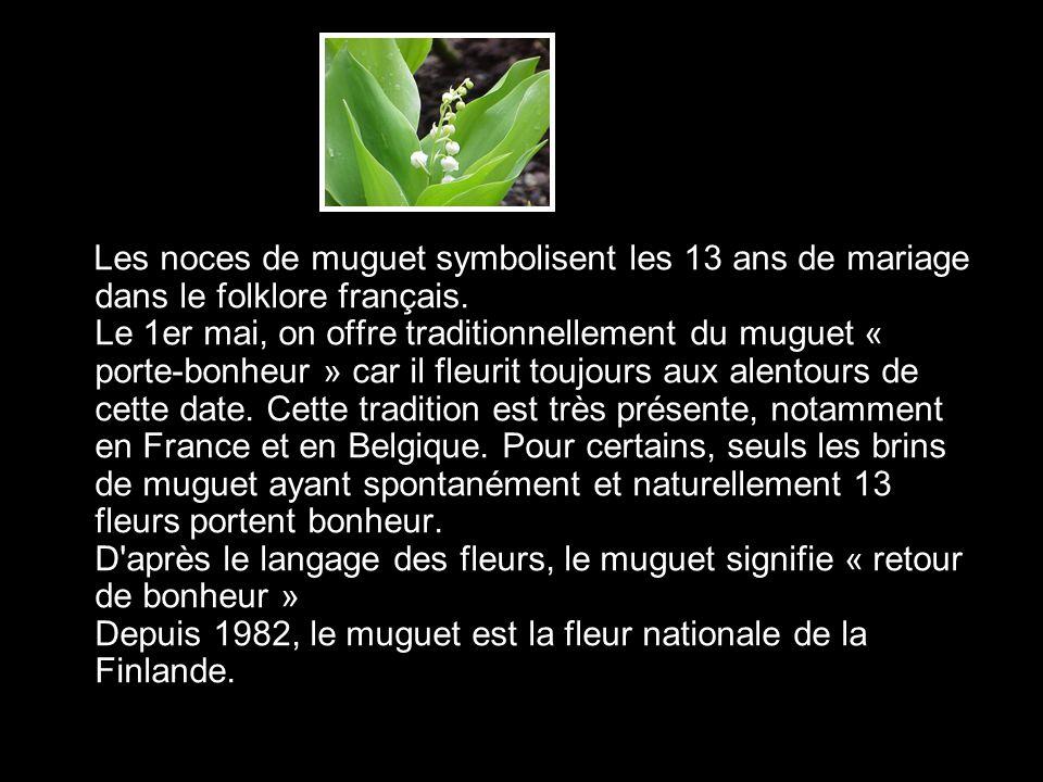 Les noces de muguet symbolisent les 13 ans de mariage dans le folklore français. Le 1er mai, on offre traditionnellement du muguet « porte-bonheur » c