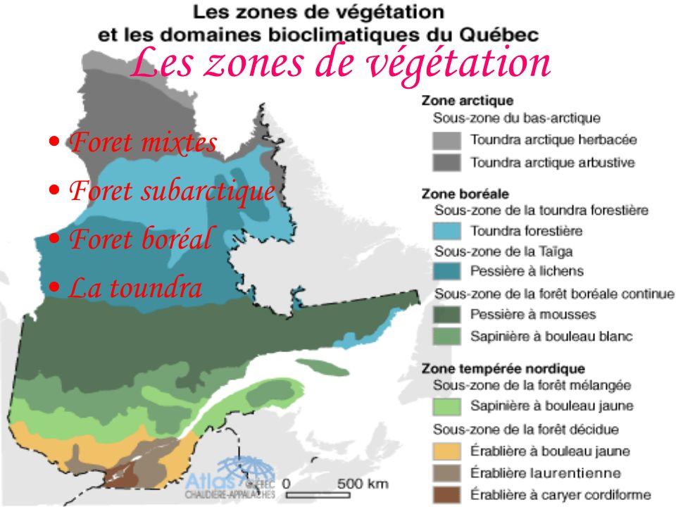 Les zones de végétation Foret mixtes Foret subarctique Foret boréal La toundra
