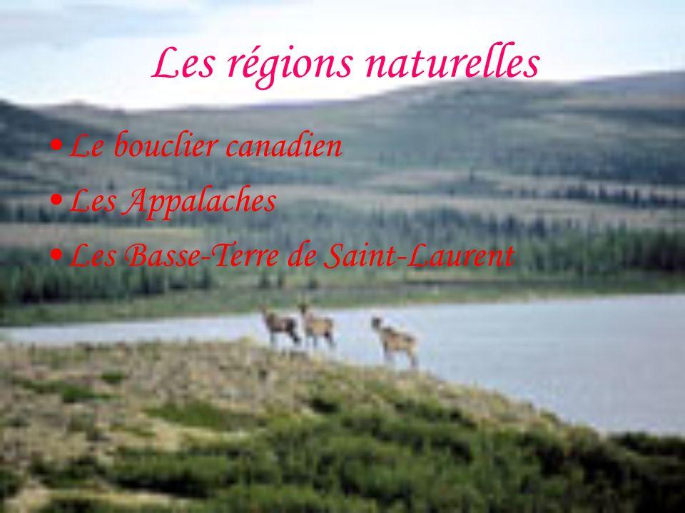 La population Au Québec on compte plus de 159 900 personnes