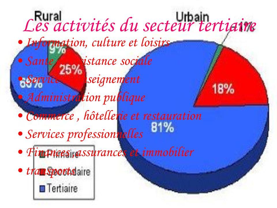 Les activités du secteur primaire Coupe de bois Agriculture et élevage Extraction minaire pêche