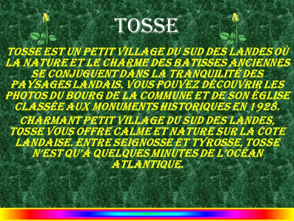 Tosse Tosse est un petit village du Sud des Landes où la nature et le charme des batisses anciennes se conjuguent dans la tranquilité des paysages Lan