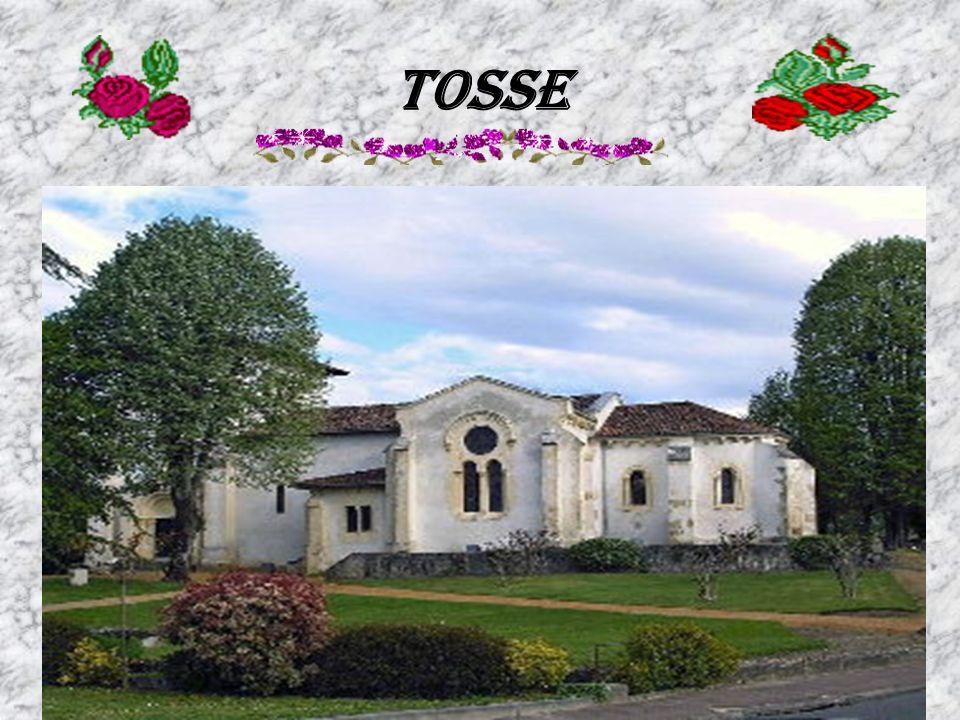Tosse
