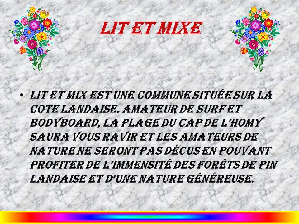 Lit et Mixe Lit et Mix est une commune située sur la cote landaise. Amateur de surf et bodyboard, la plage du Cap de lHomy saura vous ravir et les ama