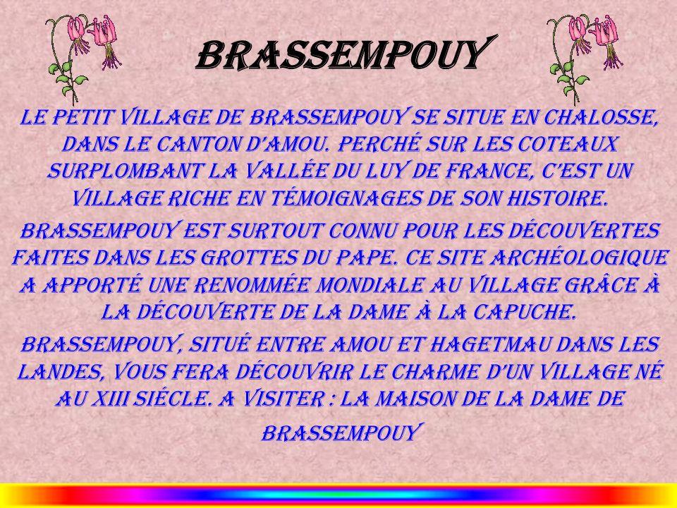 Brassempouy Le petit village de Brassempouy se situe en Chalosse, dans le canton dAmou. Perché sur les coteaux surplombant la vallée du Luy de France,