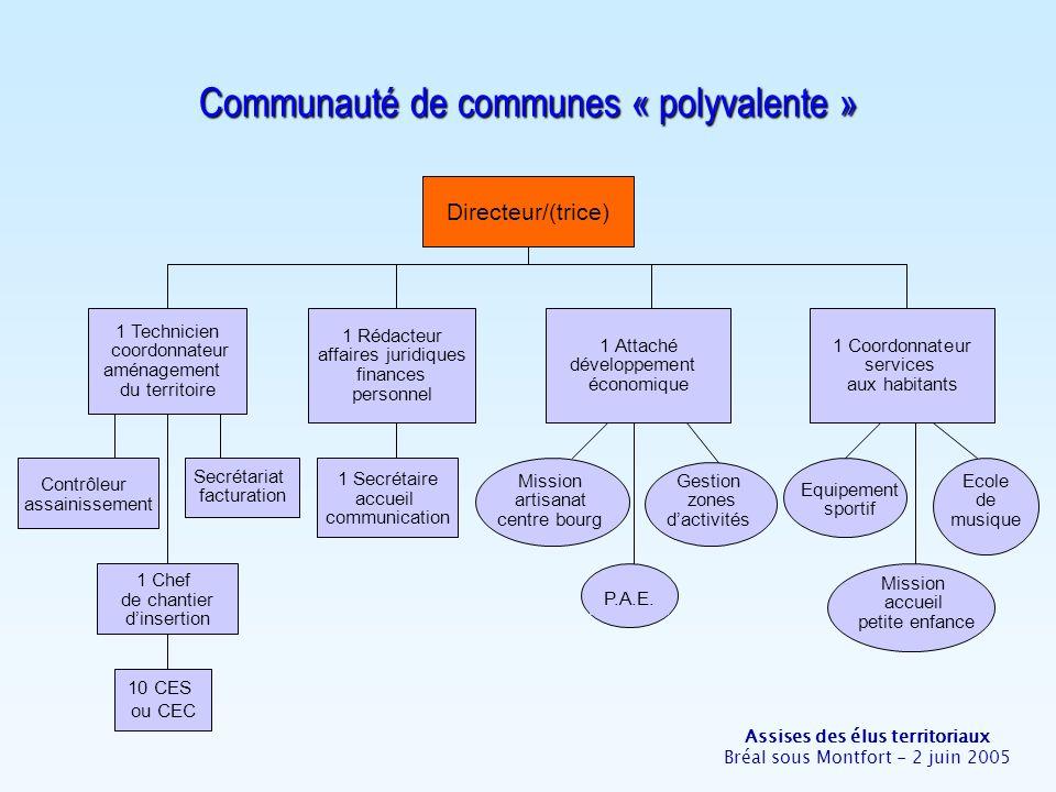 Assises des élus territoriaux Bréal sous Montfort - 2 juin 2005 Communauté de communes « polyvalente » Directeur/(trice) 1 Rédacteur affaires juridiqu