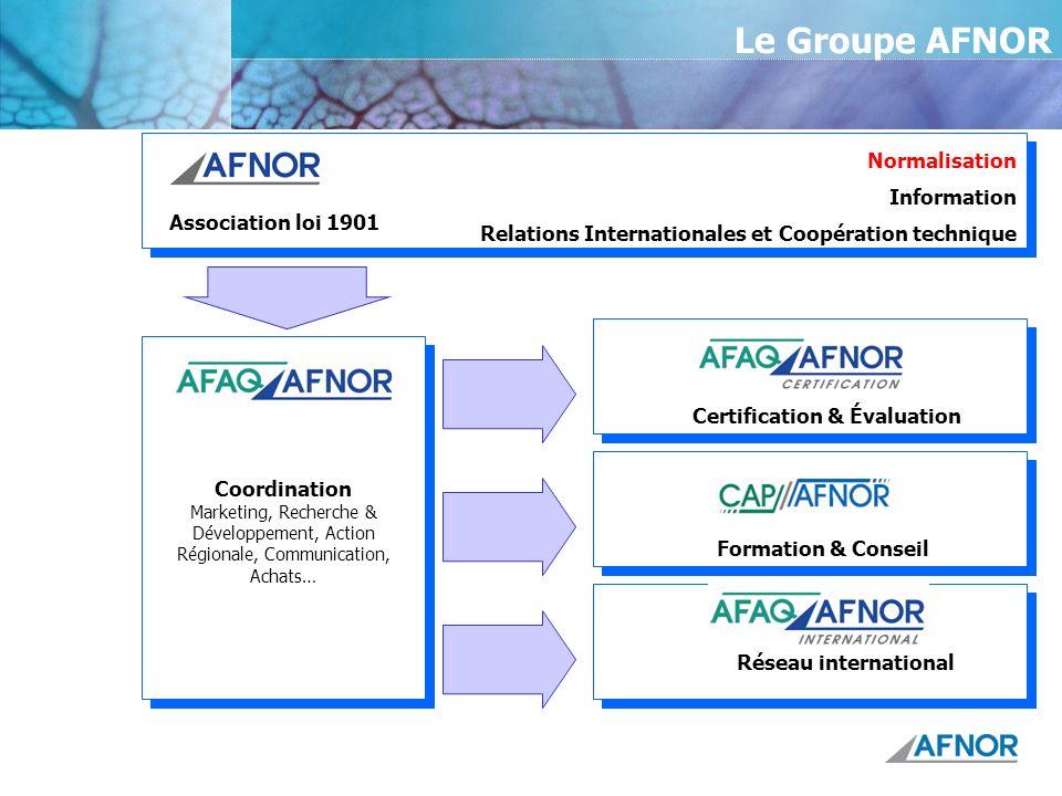 Le Groupe AFNOR Association loi 1901 Coordination Marketing, Recherche & Développement, Action Régionale, Communication, Achats… Normalisation Informa