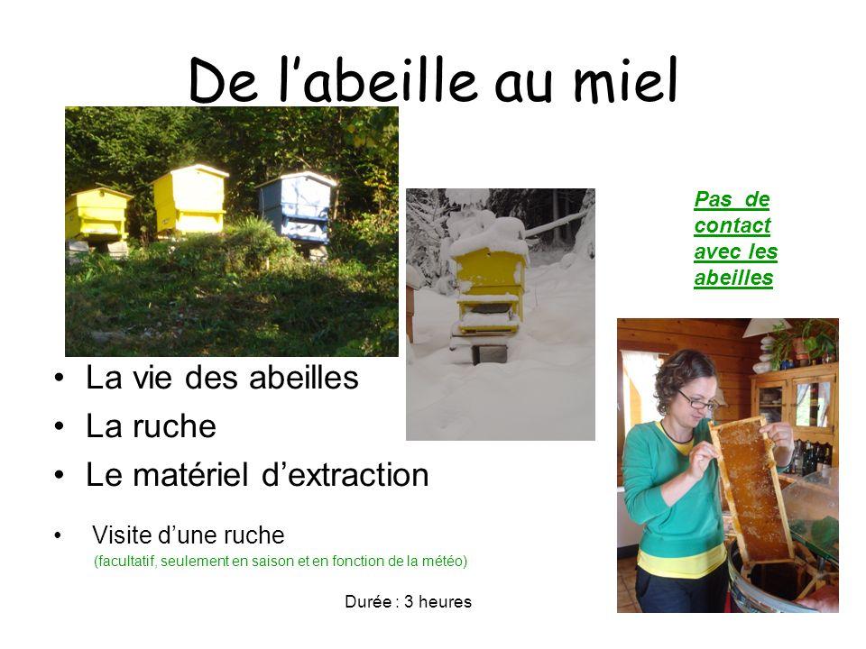 De labeille au miel La vie des abeilles La ruche Le matériel dextraction Visite dune ruche (facultatif, seulement en saison et en fonction de la météo) Durée : 3 heures Pas de contact avec les abeilles