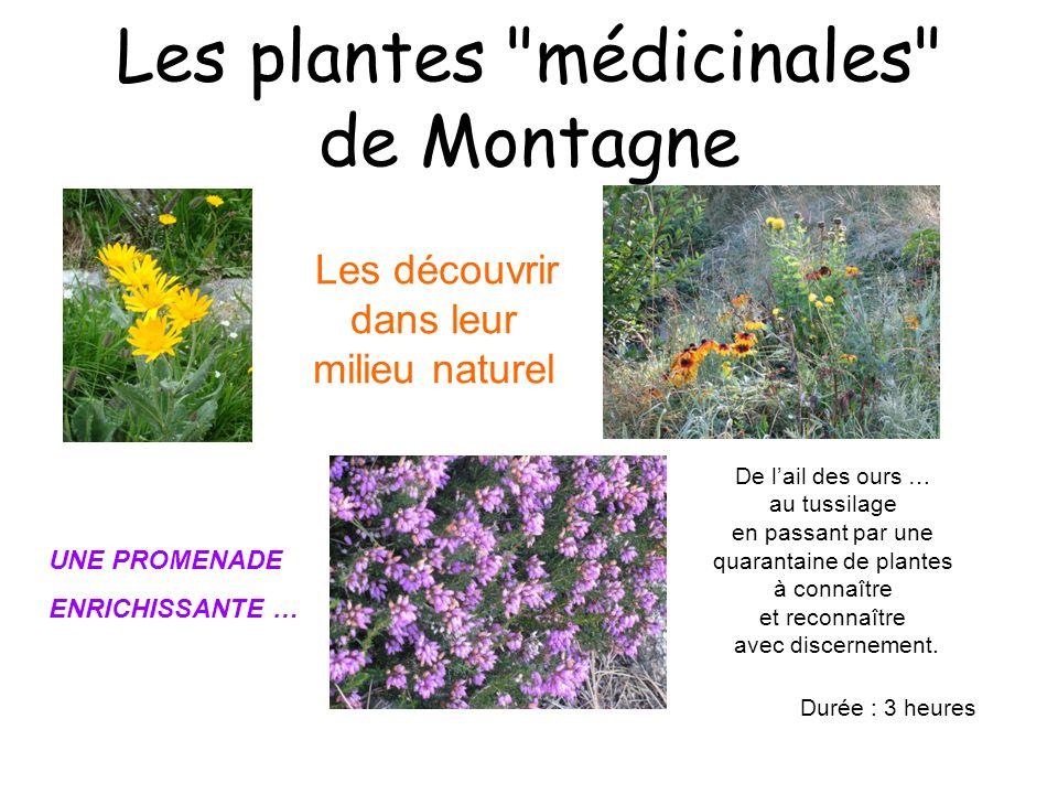 Les plantes médicinales de Montagne Les découvrir dans leur milieu naturel De lail des ours … au tussilage en passant par une quarantaine de plantes à connaître et reconnaître avec discernement.