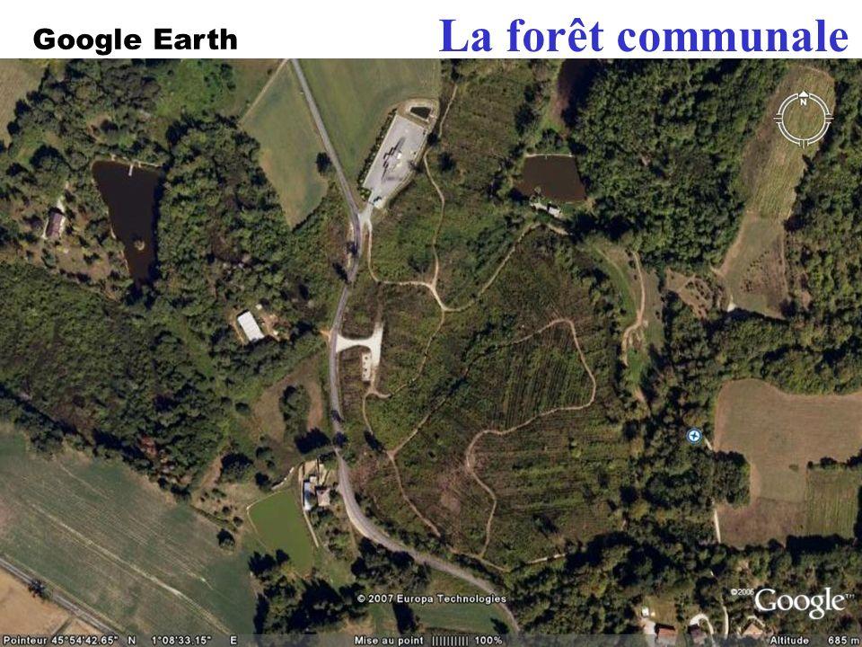 La forêt communale En 199, la forêt a été dévastée … En 2003, la forêt a été replantée : 15 000 arbres ! Google Earth