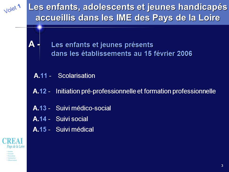 3 A.11 - Scolarisation A.12 - Initiation pré-professionnelle et formation professionnelle A.13 - Suivi médico-social A.14 - Suivi social A.15 - Suivi