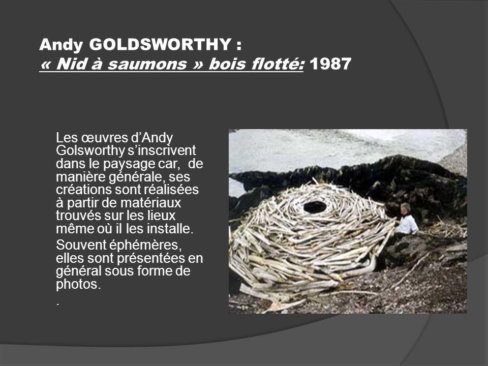 Andy GOLDSWORTHY : « Nid à saumons » bois flotté: 1987 Les œuvres dAndy Golsworthy sinscrivent dans le paysage car, de manière générale, ses créations sont réalisées à partir de matériaux trouvés sur les lieux même où il les installe.