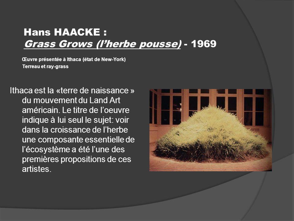 Hans HAACKE : Grass Grows (lherbe pousse) - 1969 Œuvre présentée à Ithaca (état de New-York) Terreau et ray-grass Ithaca est la «terre de naissance » du mouvement du Land Art américain.