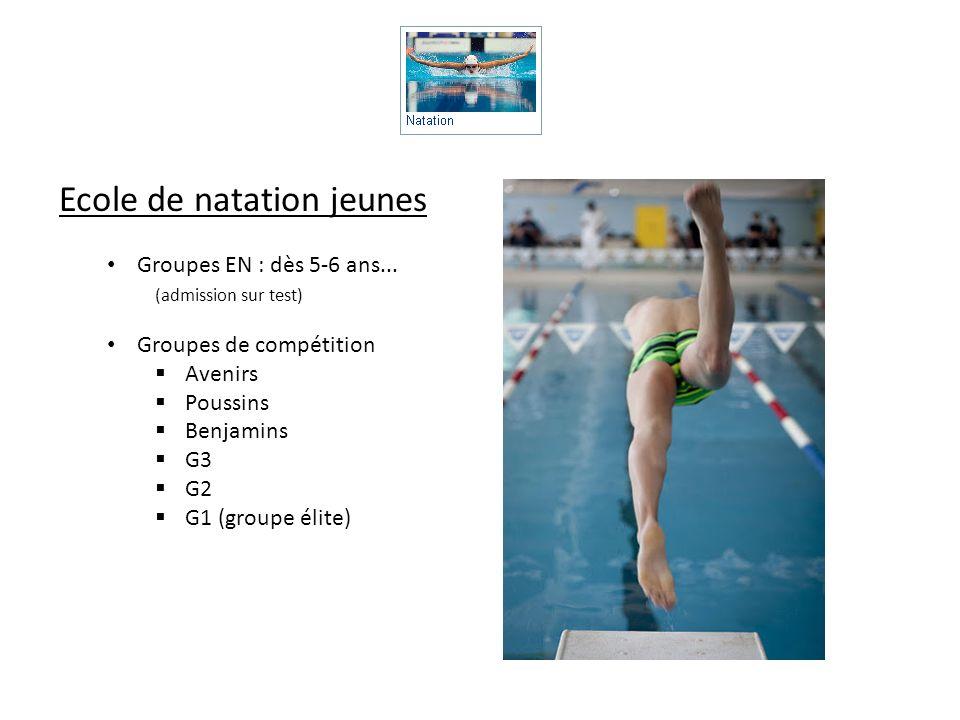 Ecole de natation jeunes Groupes EN : dès 5-6 ans... (admission sur test) Groupes de compétition Avenirs Poussins Benjamins G3 G2 G1 (groupe élite)