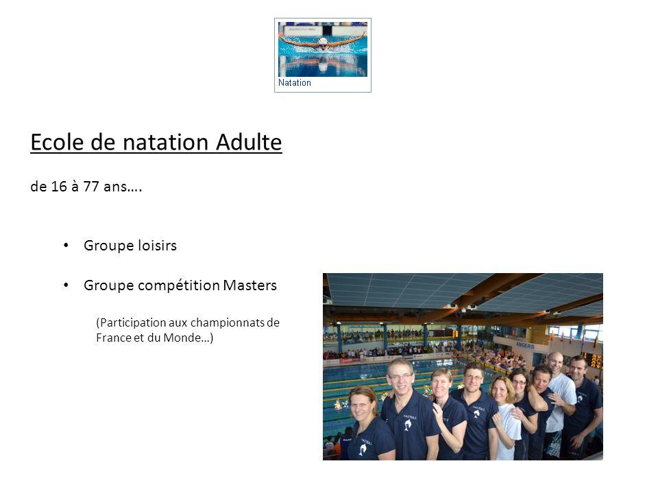 Ecole de natation Adulte de 16 à 77 ans…. Groupe loisirs Groupe compétition Masters (Participation aux championnats de France et du Monde…)
