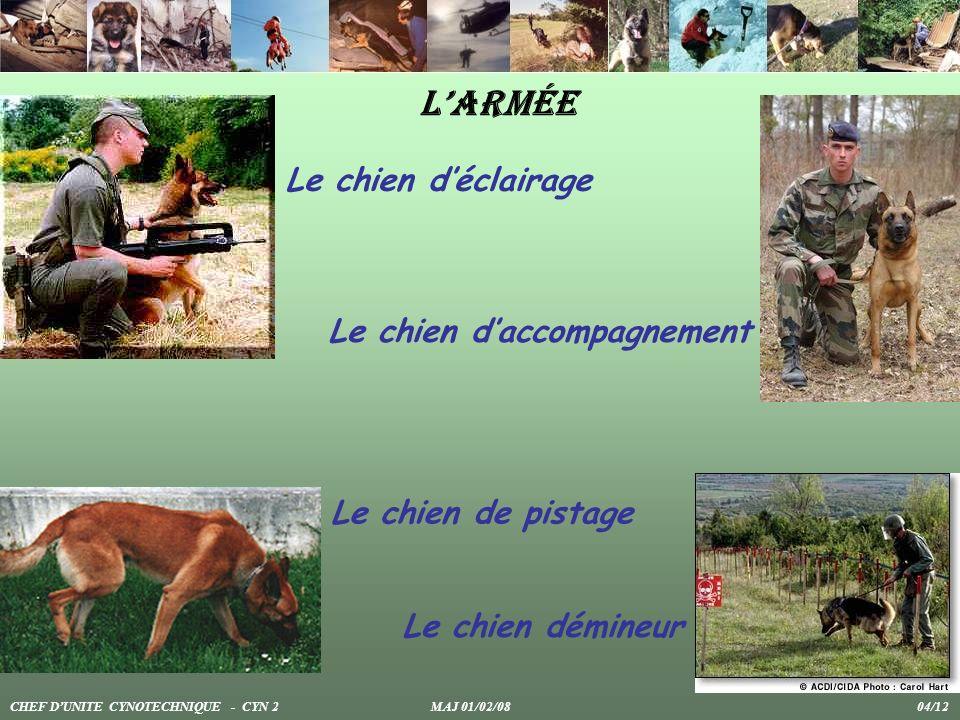 Larmée Le chien déclairage Le chien daccompagnement Le chien de pistage Le chien démineur CHEF DUNITE CYNOTECHNIQUE - CYN 2 MAJ 01/02/08 04/12