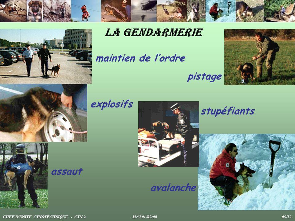La gendarmerie maintien de lordre pistage explosifs stupéfiants avalanche assaut CHEF DUNITE CYNOTECHNIQUE - CYN 2 MAJ 01/02/08 05/12