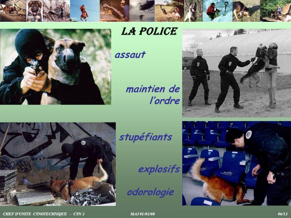 La police maintien de lordre assaut explosifs stupéfiants CHEF DUNITE CYNOTECHNIQUE - CYN 2 MAJ 01/02/08 06/12 odorologie