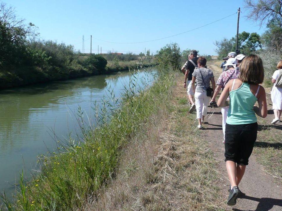 Ancien canal permettant le transport fluvial du sel