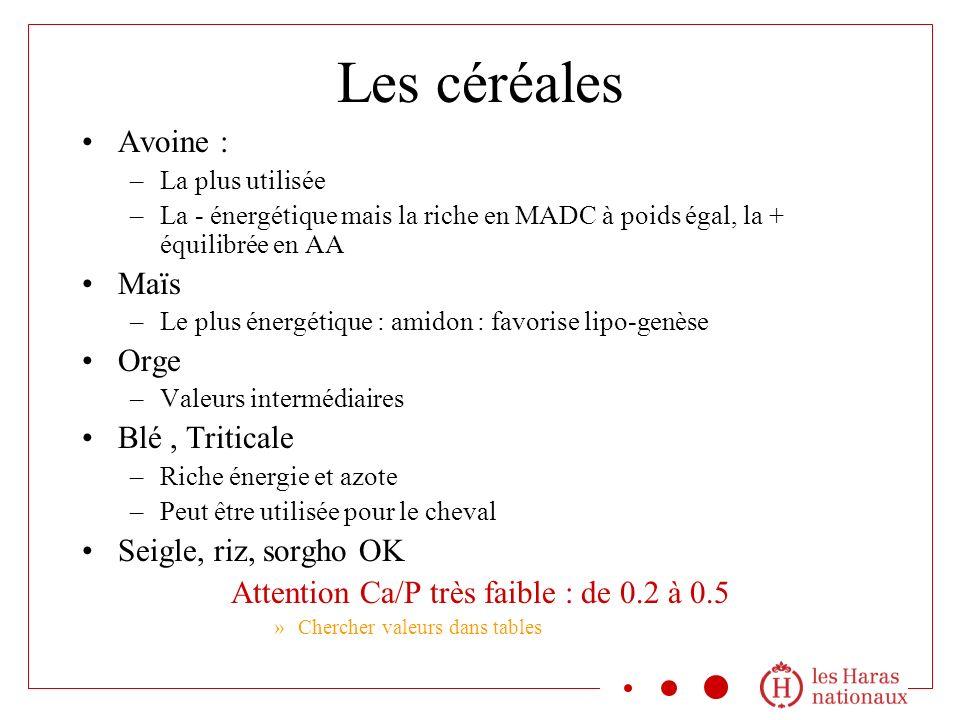Les céréales Avoine : –La plus utilisée –La - énergétique mais la riche en MADC à poids égal, la + équilibrée en AA Maïs –Le plus énergétique : amidon : favorise lipo-genèse Orge –Valeurs intermédiaires Blé, Triticale –Riche énergie et azote –Peut être utilisée pour le cheval Seigle, riz, sorgho OK Attention Ca/P très faible : de 0.2 à 0.5 »Chercher valeurs dans tables