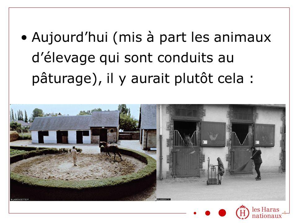 4 Aujourdhui (mis à part les animaux délevage qui sont conduits au pâturage), il y aurait plutôt cela :