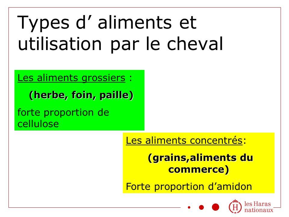 Types d aliments et utilisation par le cheval Les aliments grossiers : (herbe, foin, paille) (herbe, foin, paille) forte proportion de cellulose Les a