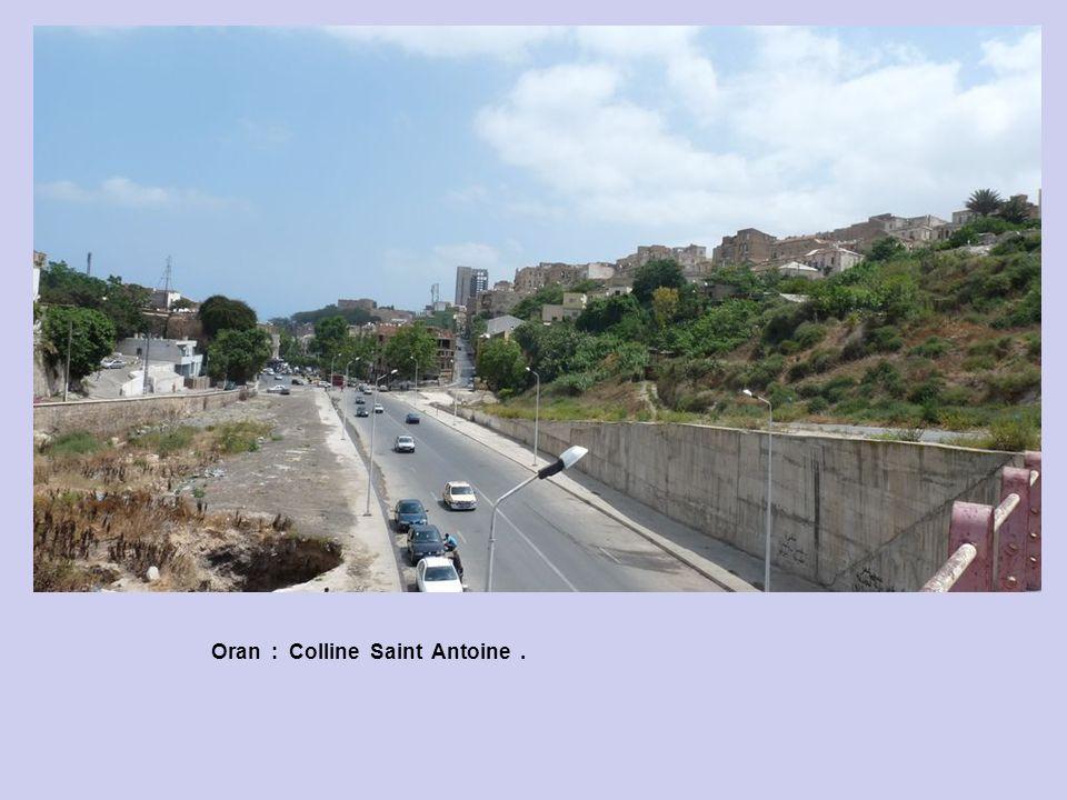 Oran : Colline Saint Antoine.