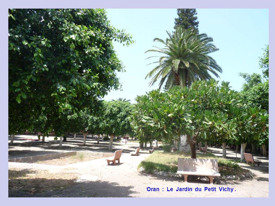 Oran : Le Jardin du Petit Vichy.