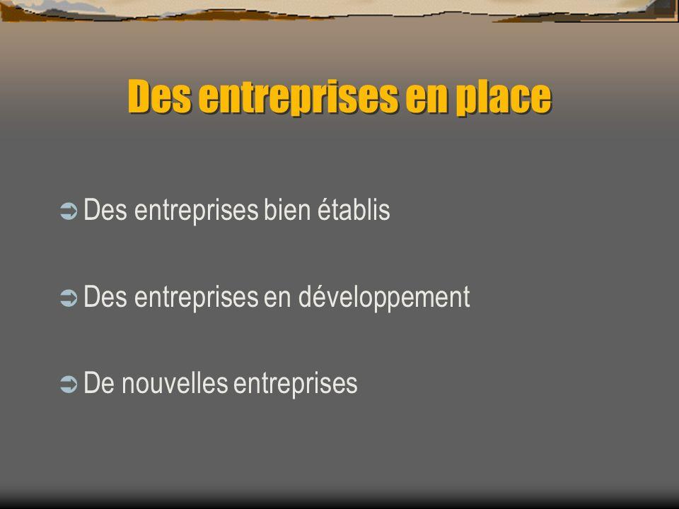 Des entreprises en place Des entreprises bien établis Des entreprises en développement De nouvelles entreprises