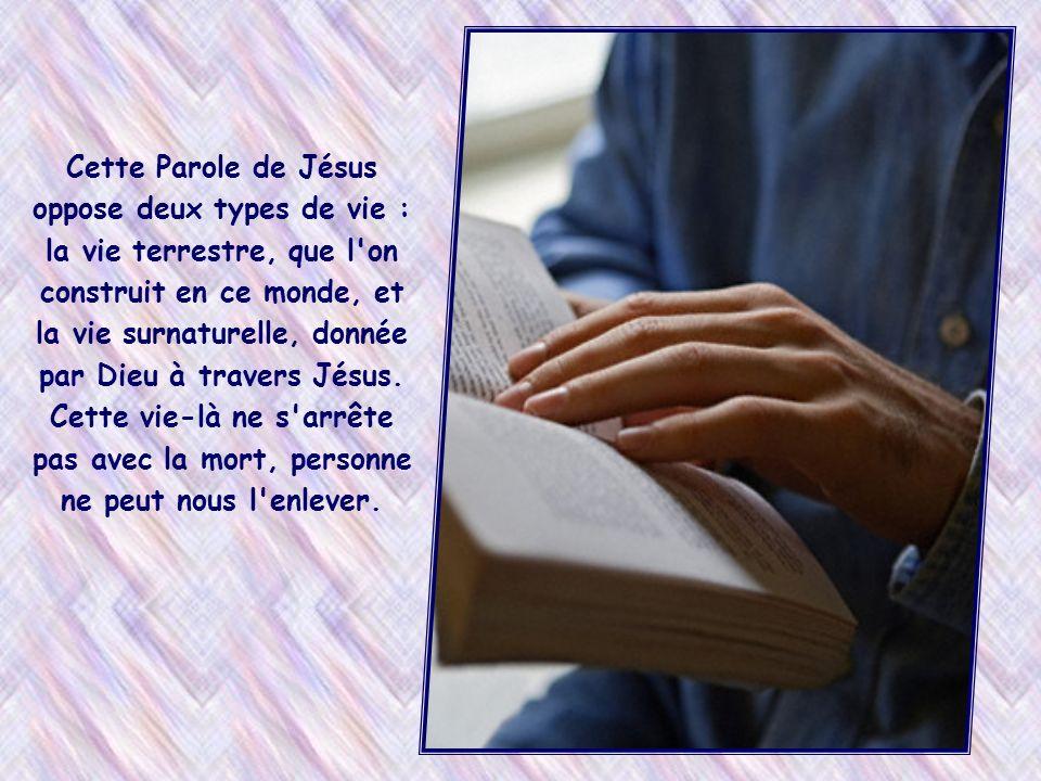 « Qui aura assuré sa vie la perdra et qui perdra sa vie à cause de moi l'assurera » (Mt 10,39)