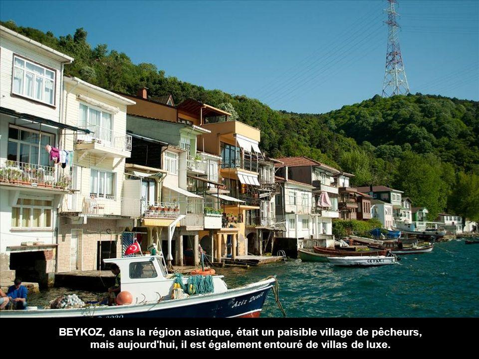 Yeniköy, village datant de l'époque byzantine, est pleine de villas du XIXe siècle.
