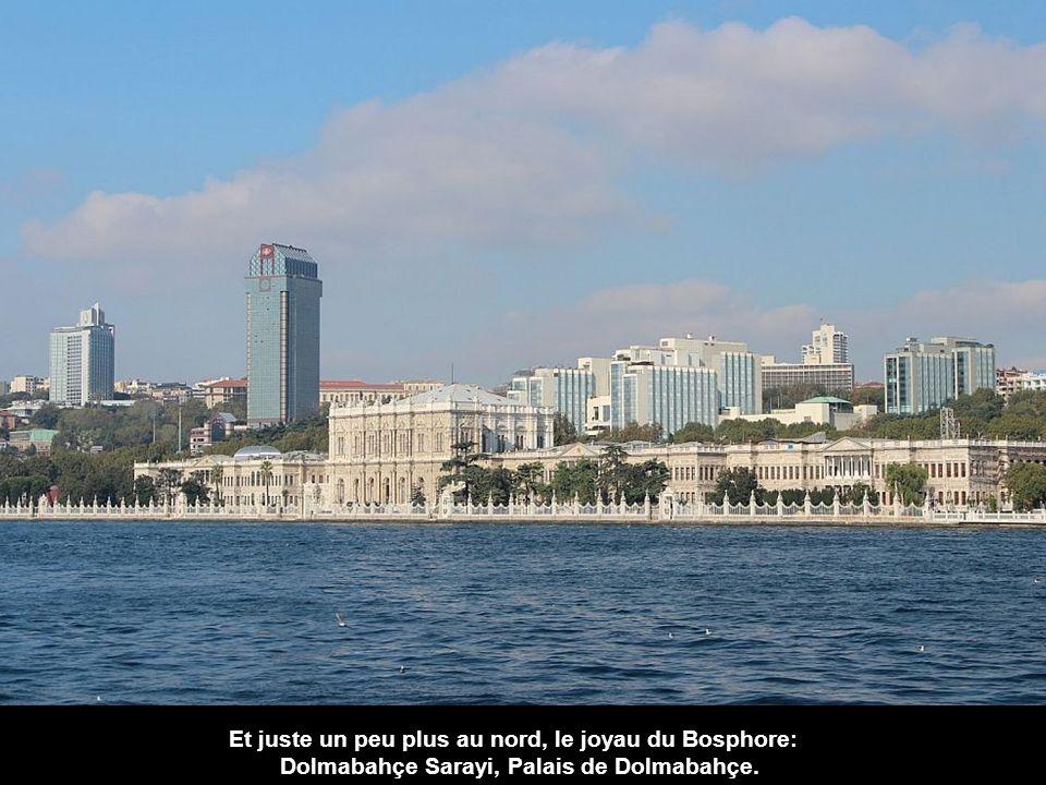 Revenant sur le côté européen, nous voyons le Dolmabahçe Camii et derrière l'hôtel Ritz-Carlton moderne.