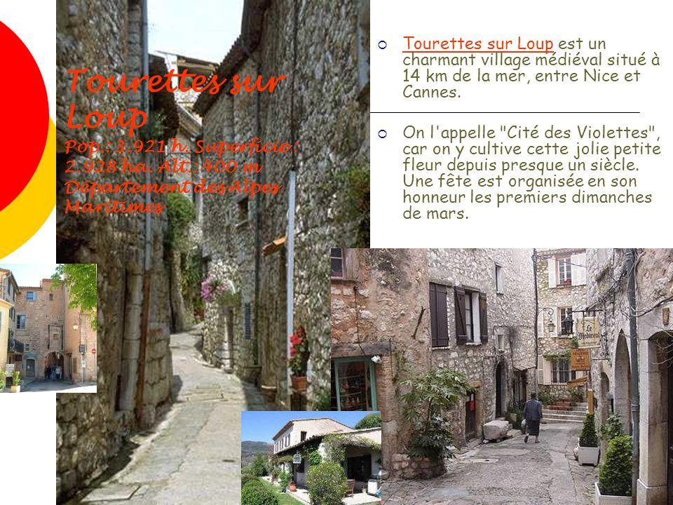 Tourettes sur Loup Pop.: 3.921 h. Superficie : 2.928 ha. Alt.: 400 m Département des Alpes Maritimes Tourettes sur Loup est un charmant village médiév
