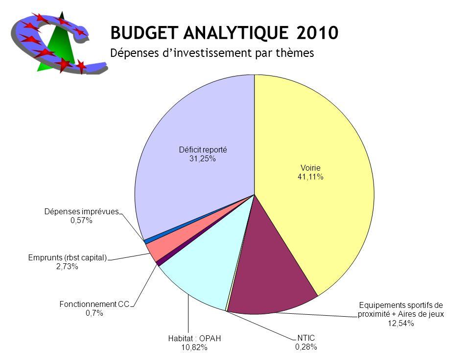 BUDGET ANALYTIQUE 2010 Dépenses dinvestissement par thèmes