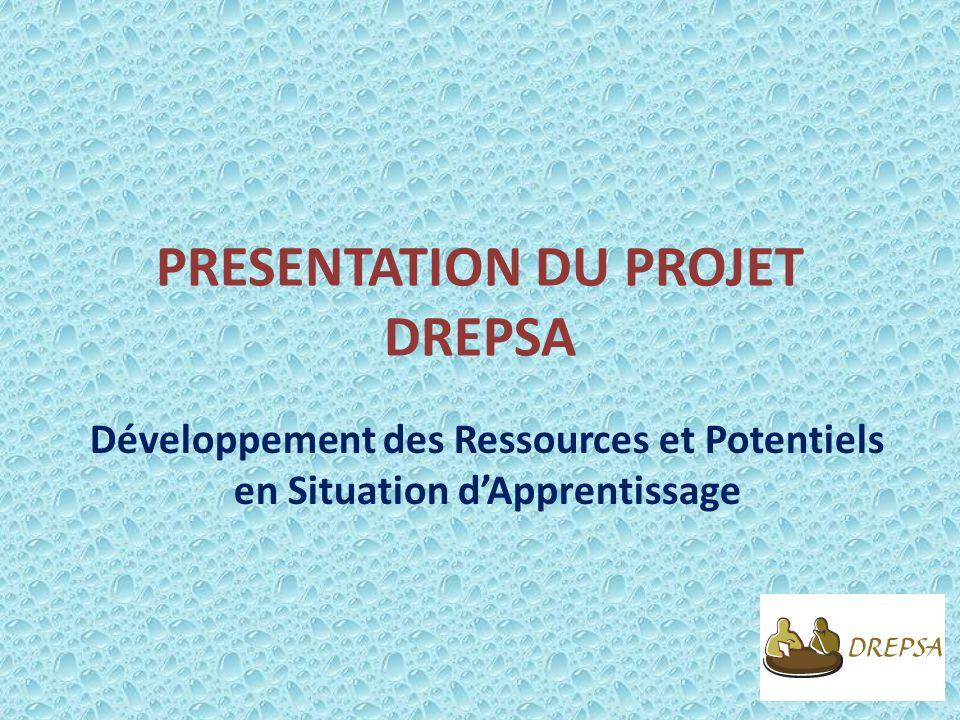PRESENTATION DU PROJET DREPSA Développement des Ressources et Potentiels en Situation dApprentissage