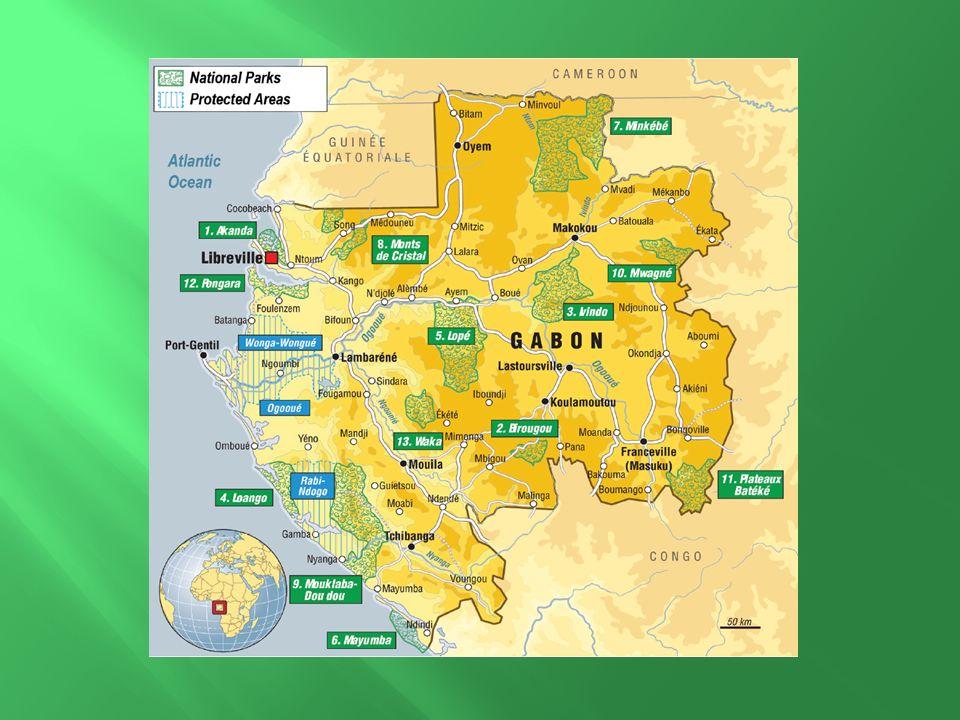 Un massif forestier équatorial, le mieux préservé dAfrique et lun des plus riche en faune et flore exceptionnelle.