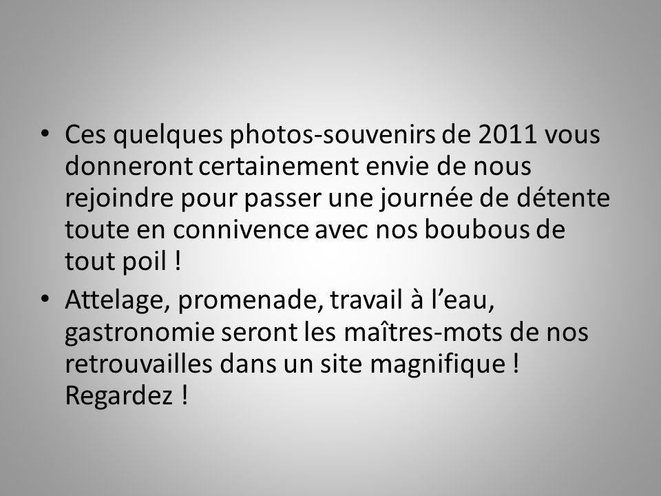 Journée conviviale « ALEX » Samedi 12 mai 2012 En Périgord avec les BOUVIERS SUISSES !