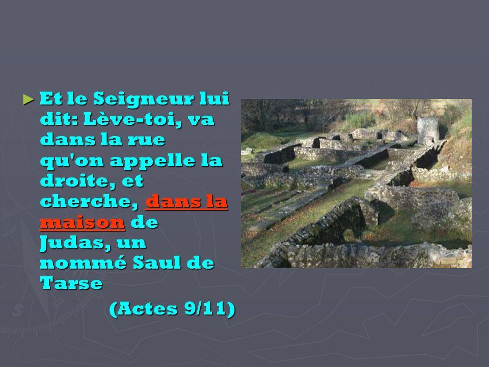 Et le Seigneur lui dit: Lève-toi, va dans la rue qu on appelle la droite, et cherche, dans la maison de Judas, un nommé Saul de Tarse Et le Seigneur lui dit: Lève-toi, va dans la rue qu on appelle la droite, et cherche, dans la maison de Judas, un nommé Saul de Tarse (Actes 9/11)