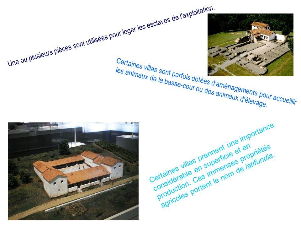 Sitographie http://www.villa.culture.fr/flash#/fr/annexe/video/t=Restitution%203D%2 0de%20Loupian http://jfbradu.free.fr/celtes/bourges/page00.php3#villae http://www.civilisation-romaine.com/l-habitat-romain-la-domus-la-villa-l- insula/la-villa-romaine http://www.google.fr/imgres?q=villa+rustica+schema&hl=fr&safe=vss&tbm=isch&tbnid=7vsAaNW88sHI7M:&imgrefurl=http://jfbrad u.free.fr/celtes/bourges/page00.php3&docid=zwniE_tFMWPmPM&imgurl=http://jfbradu.free.fr/celtes/bourges/objets/plan- mais-rom.jpg&w=376&h=534&ei=- 1FQUaq3I6L_4QSR7YHABg&zoom=1&iact=hc&vpx=4&vpy=163&dur=5784&hovh=268&hovw=188&tx=129&ty=91&page=1 &tbnh=147&tbnw=104&start=0&ndsp=18&ved=1t:429,r:11,s:0,i:114&biw=1024&bih=629629 http://de.wikipedia.org/wiki/Villa_rustica http://www.icronos.org/films/film_fiche.asp?id=429 http://voyagesenduo.com/italie/rome_antique_serviles.html