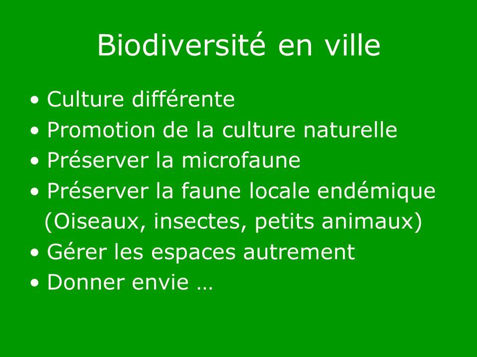 Biodiversité en ville Culture différente Promotion de la culture naturelle Préserver la microfaune Préserver la faune locale endémique (Oiseaux, insectes, petits animaux) Gérer les espaces autrement Donner envie …