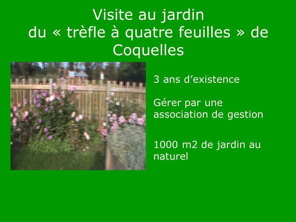 Visite au jardin du « trèfle à quatre feuilles » de Coquelles 3 ans dexistence Gérer par une association de gestion 1000 m2 de jardin au naturel