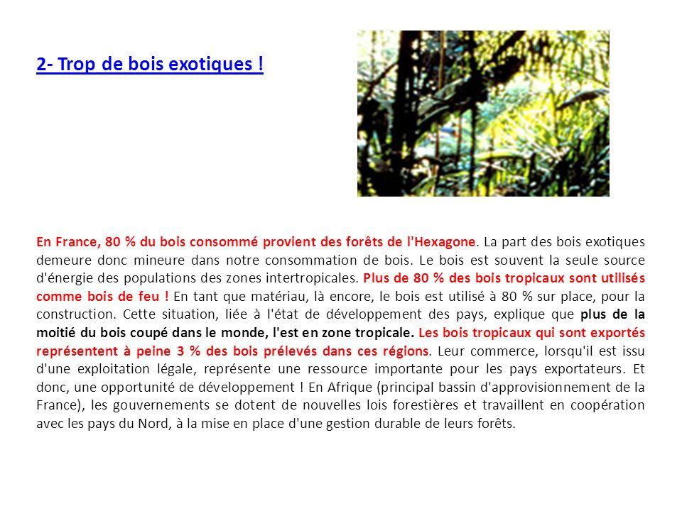 2- Trop de bois exotiques ! En France, 80 % du bois consommé provient des forêts de l'Hexagone. La part des bois exotiques demeure donc mineure dans n