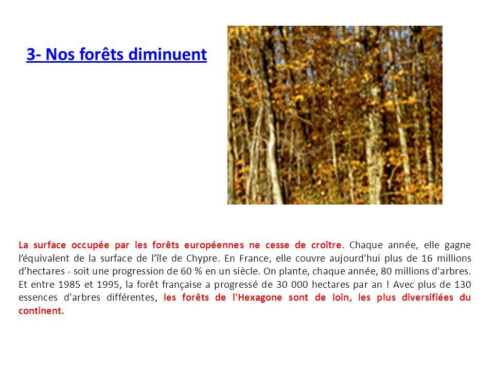 3- Nos forêts diminuent La surface occupée par les forêts européennes ne cesse de croître. Chaque année, elle gagne léquivalent de la surface de lîle