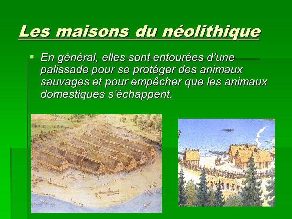 Les maisons du néolithique En général, elles sont entourées dune palissade pour se protéger des animaux sauvages et pour empêcher que les animaux dome