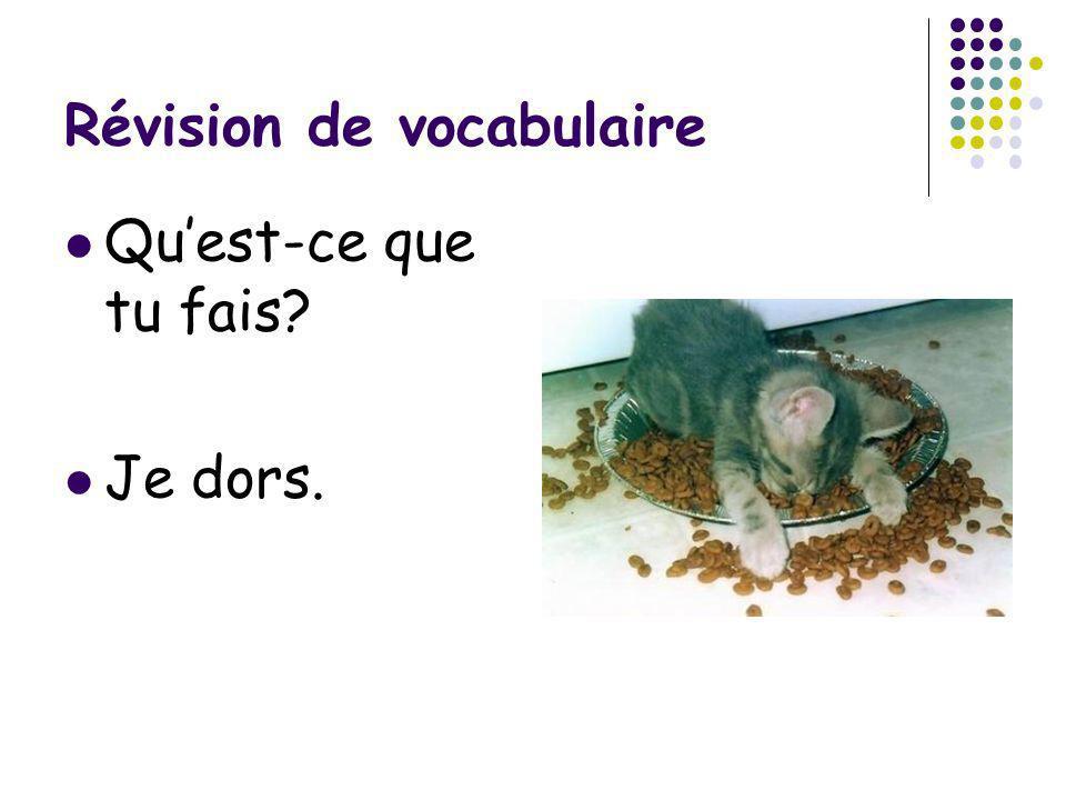 Révision de vocabulaire Quest-ce que tu fais? Je dors.
