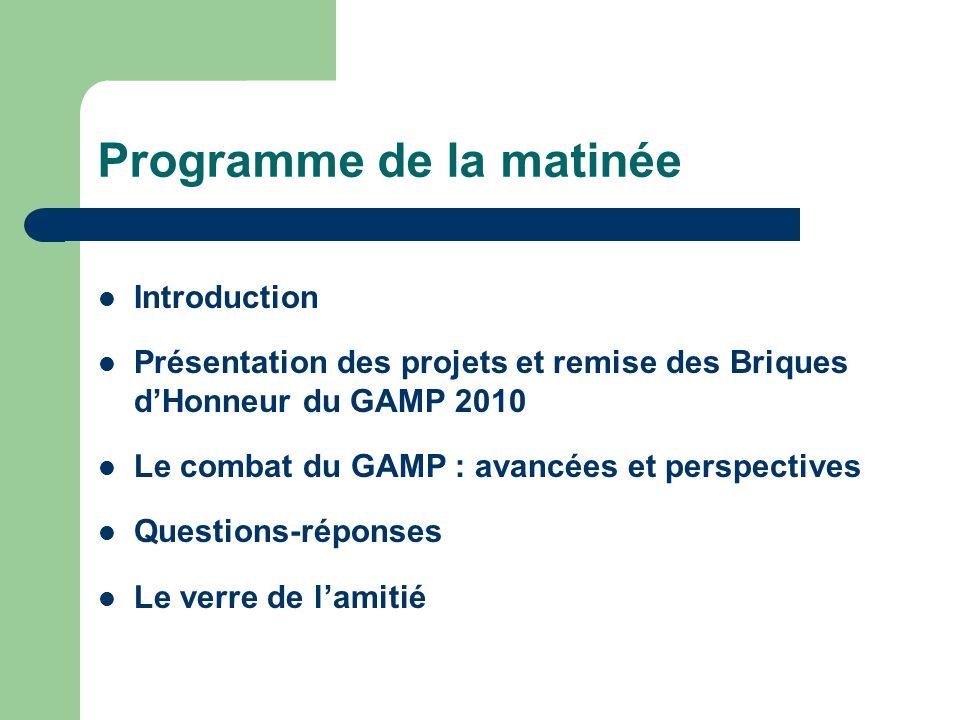 Programme de la matinée Introduction Présentation des projets et remise des Briques dHonneur du GAMP 2010 Le combat du GAMP : avancées et perspectives