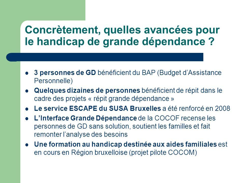 Concrètement, quelles avancées pour le handicap de grande dépendance ? 3 personnes de GD bénéficient du BAP (Budget dAssistance Personnelle) Quelques