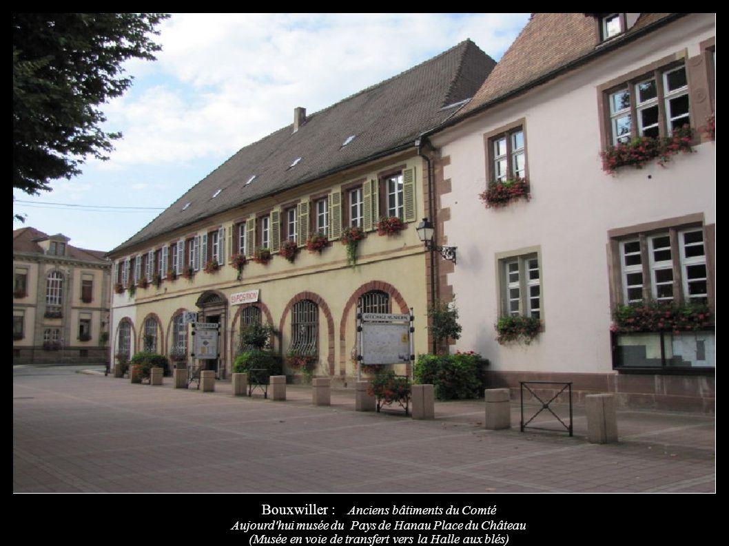 Bouxwiller : Anciens bâtiments du Comté Aujourd'hui musée du Pays de Hanau Place du Château (Musée en voie de transfert vers la Halle aux blés)